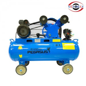 Máy nén khí mini Pegasus TM-V -0.25/8-70L