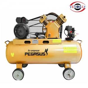 Máy nén khí mini dây đai Pegasus TM-V-0.17/8-120L