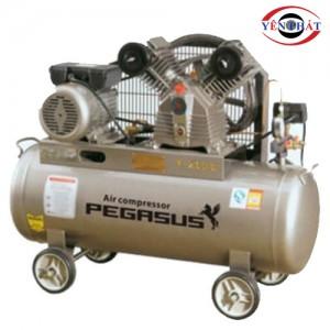 Máy nén khí dây đai PEGASUS TMW-09/16/ZG-C