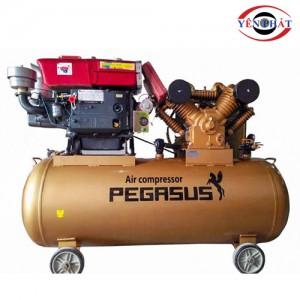 Máy nén khí chạy dầu Pegasus TM-W-1.6/12.5-500L